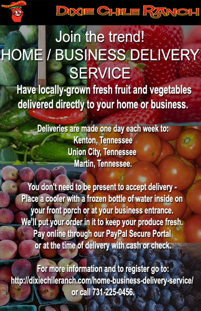 Home/Business Delivery